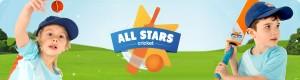 AllStars Cricket picture